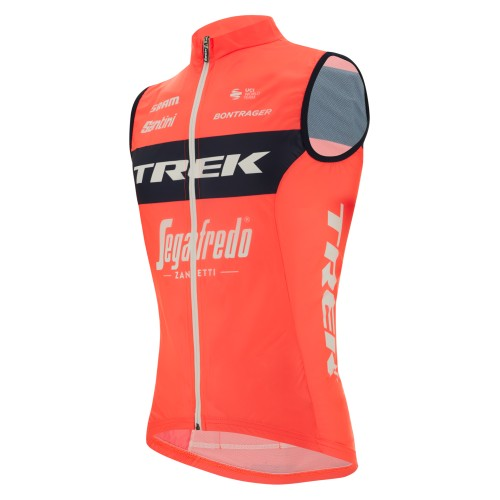 PROTEIN FIBER BAR NAMED LEMON QUARK